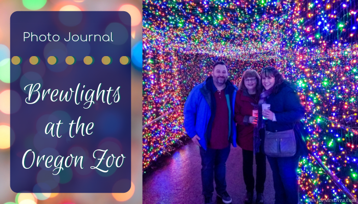 Photo Journal: Zoolights 2018