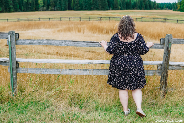 Feeling her summer aesthetic in this Ditsy Peasant Dress from Torrid -  DivineMrsDiva.com #psblogger #plussize #styleblogger #plussizeblogger #plussizefashion #psootd #ootd #plussizeclothing #outfit #style #40style #40plusblogger #Torrid